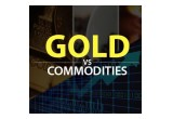 Gold vs Commodities